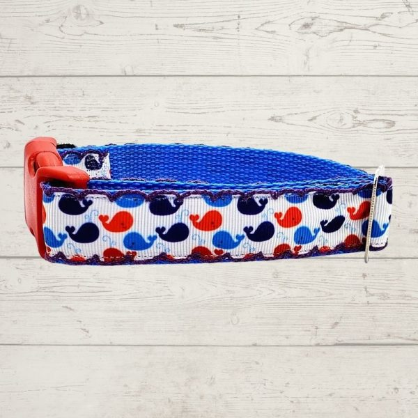 Whale of a Time Dog Collar